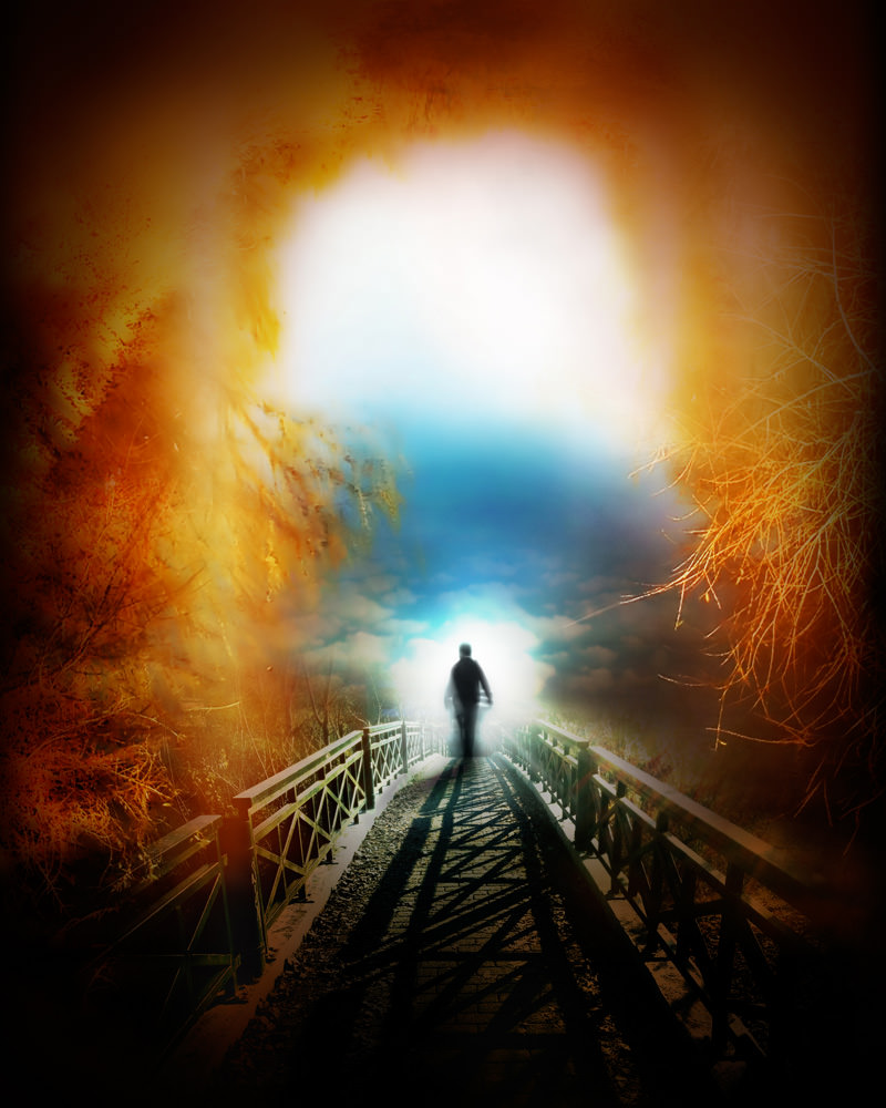 Karma und Reinkarnation von Rijad